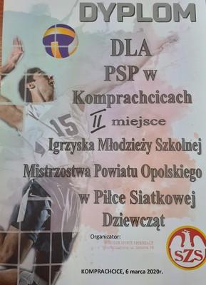 Galeria Finał powiatu- Piłka siatkowa 2020